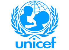 Recommendations for a system for prevention of parent-to-child HIV transmission for UNICEF